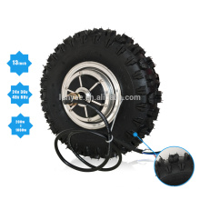 "48v 1000w 13"" Off-Road Tyre Double Shaft Brushless Hub Motor For Electric Scooter"