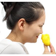 Massa perfumada de 3 oz com aroma de limão para terapia (MQ-SPN07)