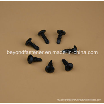 Pan Head Self Drilling Screw 4.2X10 Black Xylon