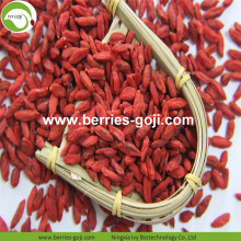 Fournir des fruits Premium sans pesticide Goji Berry