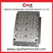 Hochwertige Multi Cavity Plastik Cap Mold in Huangyan