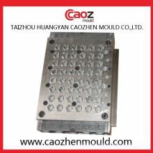 De alta qualidade multi cavidade plástico molde em Huangyan