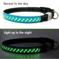 Led Rechargeable Lighted Dog Cat Collars