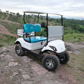 250cc 2 seats fast gas golf cart for sale