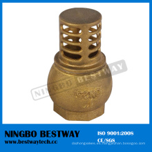 Fábrica directa de la válvula de retención del pie de cobre amarillo de China (BW-C08)
