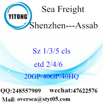 Shenzhen Port Sea Freight Shipping Para Assab
