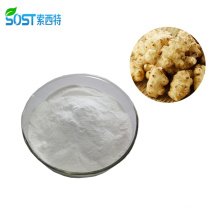 High Quality Organic Chicory Root Extract Inulin Powder