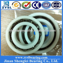 Nylon Pulley Wheels Deep Groove Ball Bearing 6202 in China Market