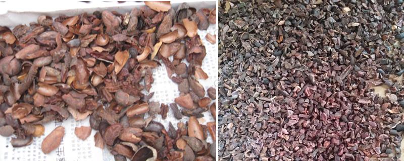 cocoa peeling machine6