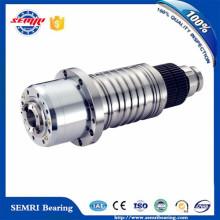 Drehmaschine Spindel für CNC (220XPS08)