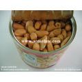Gute Preis Tin Packaged geröstete und gesalzene Erdnüsse
