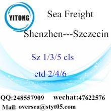 Transporte marítimo de Shenzhen Port Freight a Szczecin