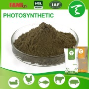 Microbial Feed Additive for Fish Shrimp Crab fish feed additives