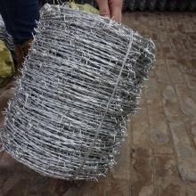 Hot-Dipped Galvanized Barbed wire fence dengan Customizable