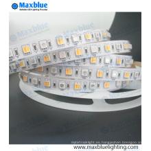 RGBW luz de la luz de la tira del LED