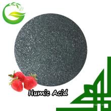 Fertilizante ácido húmico soluble en agua del 90% para la agricultura