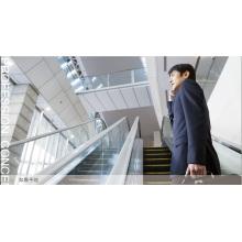 Aksen Escaleras mecánicas de servicio pesado de interior y exterior tipo de puerta