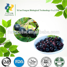 High quality l pure acai berry extract powder