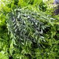 DIY artificial indoor vertical garden green wall with CE Certificate