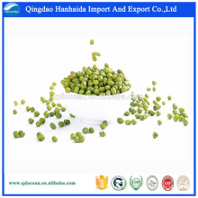 Hot sale & hot cake high quality export green mung beans with great price mung beans