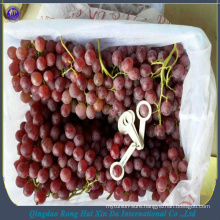2017 new arrival fresh table grapes fresh red grape
