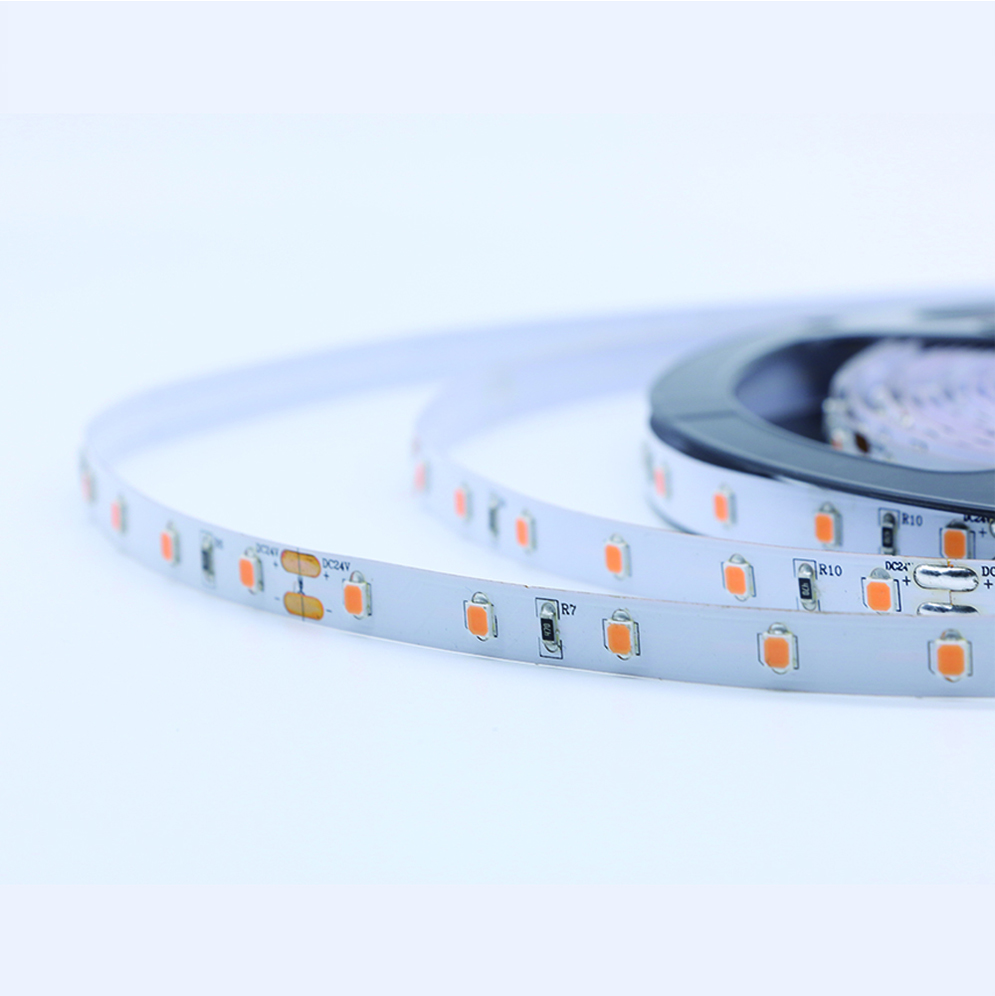 2835SMD 300led flex light