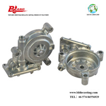 Aluminum Die Casting Walking Motor Housing