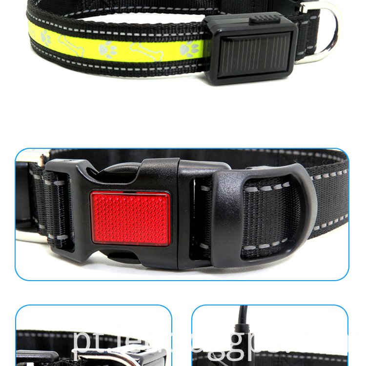 Best Flashing Dog Collar