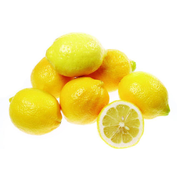 Lemon dryer dry good color, high quality, fast drying, more energy saving
