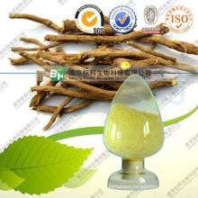 Natural Baicalin / Scutellaria Lateriflora Extract / Baical Skullcap Root Extract Powder 10% -98%