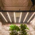 Gute Vollspektrum-LED-Wachstumslichter