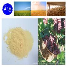 Aminoácidos enzimáticos de aminoácidos orgánicos puros