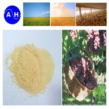 Composé d'acide aminé hydrolysé enzymatique d'engrais spécial de raisin