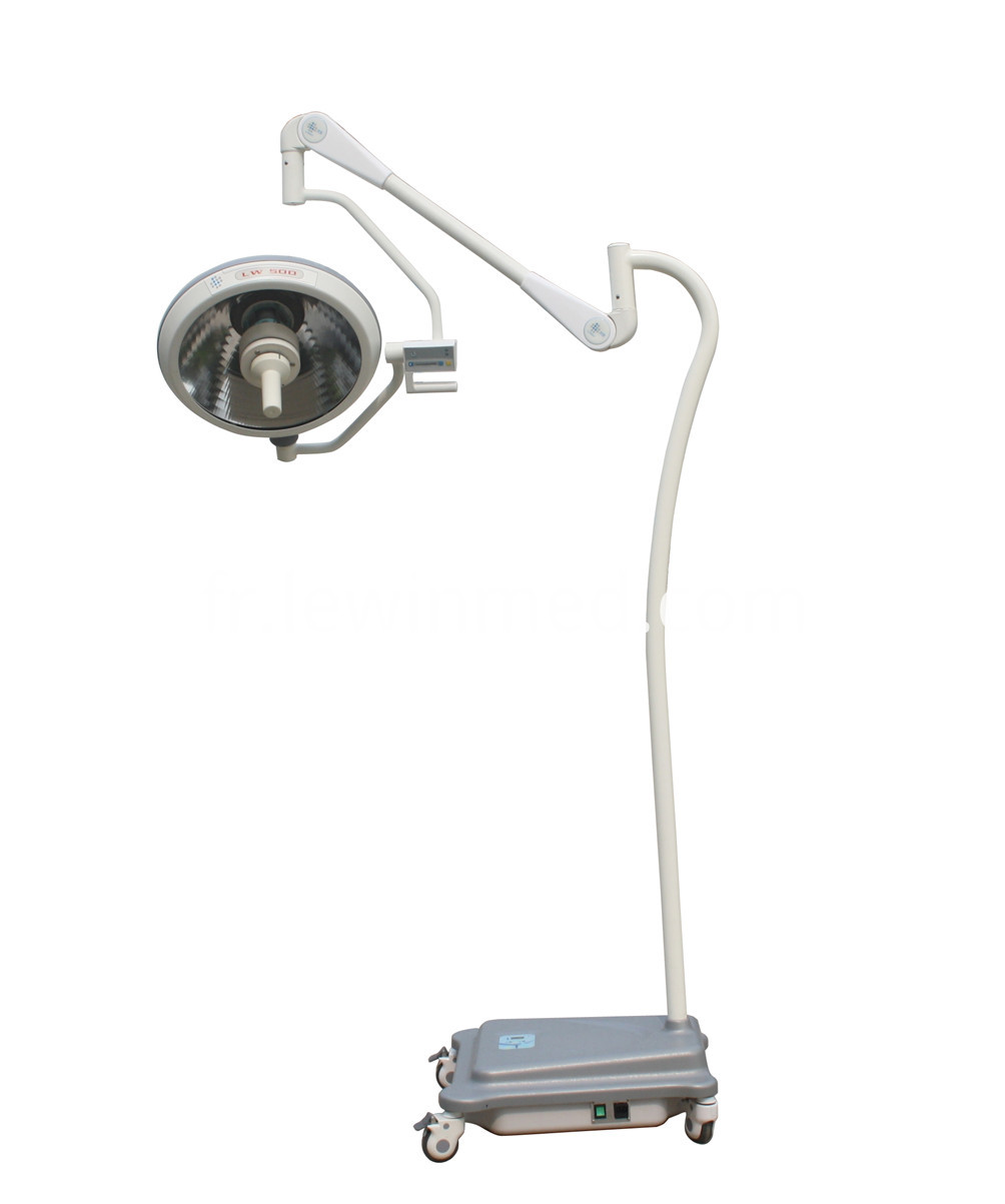 Portable halogen light