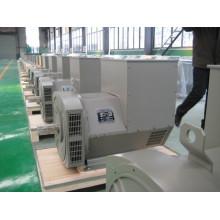 AC Generator/Alternator Double Bearing (JDG)