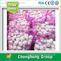 factory hot sale 2016 new crop fresh garlic