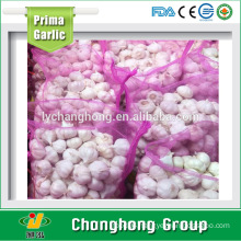 factory hot sale 2016 new crop fresh garlic