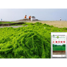 Seaweed bio Microbial base organic fertilizer for soil conditioner