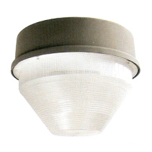 Floodlight Fixture (DS-421)