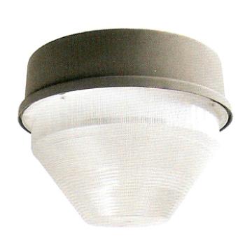 Dispositif d'éclairage pour projecteurs (DS-421)