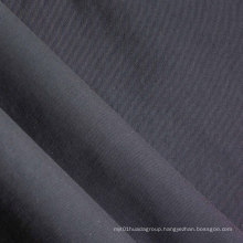 Taslan Polyester Fabric with PVC/PU