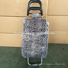Shopping bags for market trolley and wheel trolley
