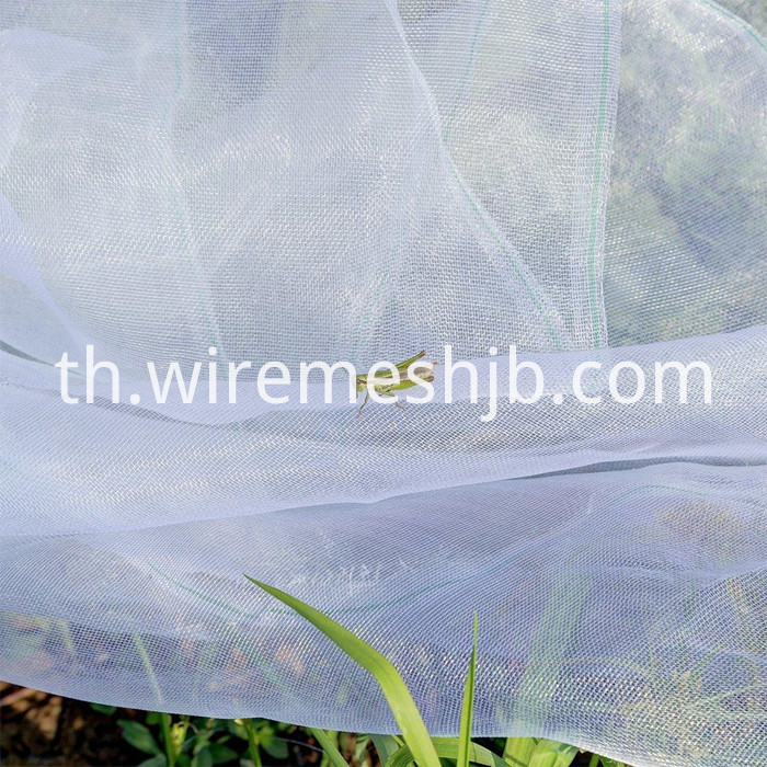 Insect Net Mesh