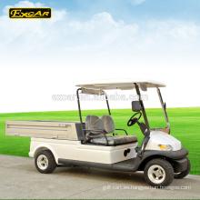 Carrito de golf eléctrico de 2 plazas carrito de golf eléctrico