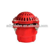 Válvula de pie hierro 125 clase PN16 DN50-DN300 precio