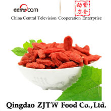 Goji Berries Wolfberry, EU Quality Low Price Goji Berries