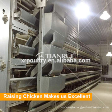 Tianrui New Raising Equipment H Frame Automatic Broiler Cage System