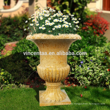 Importer Directory Plants for Large Planters VFP-N001