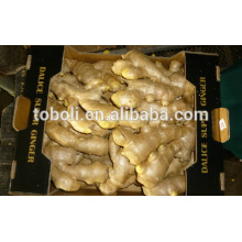 2015 new crops dried ginger