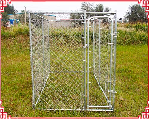 Chain link dog fence